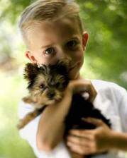boy holding dog for grief comfort