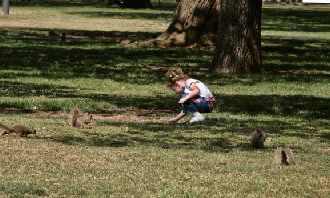 girl playing under tree with squirrels