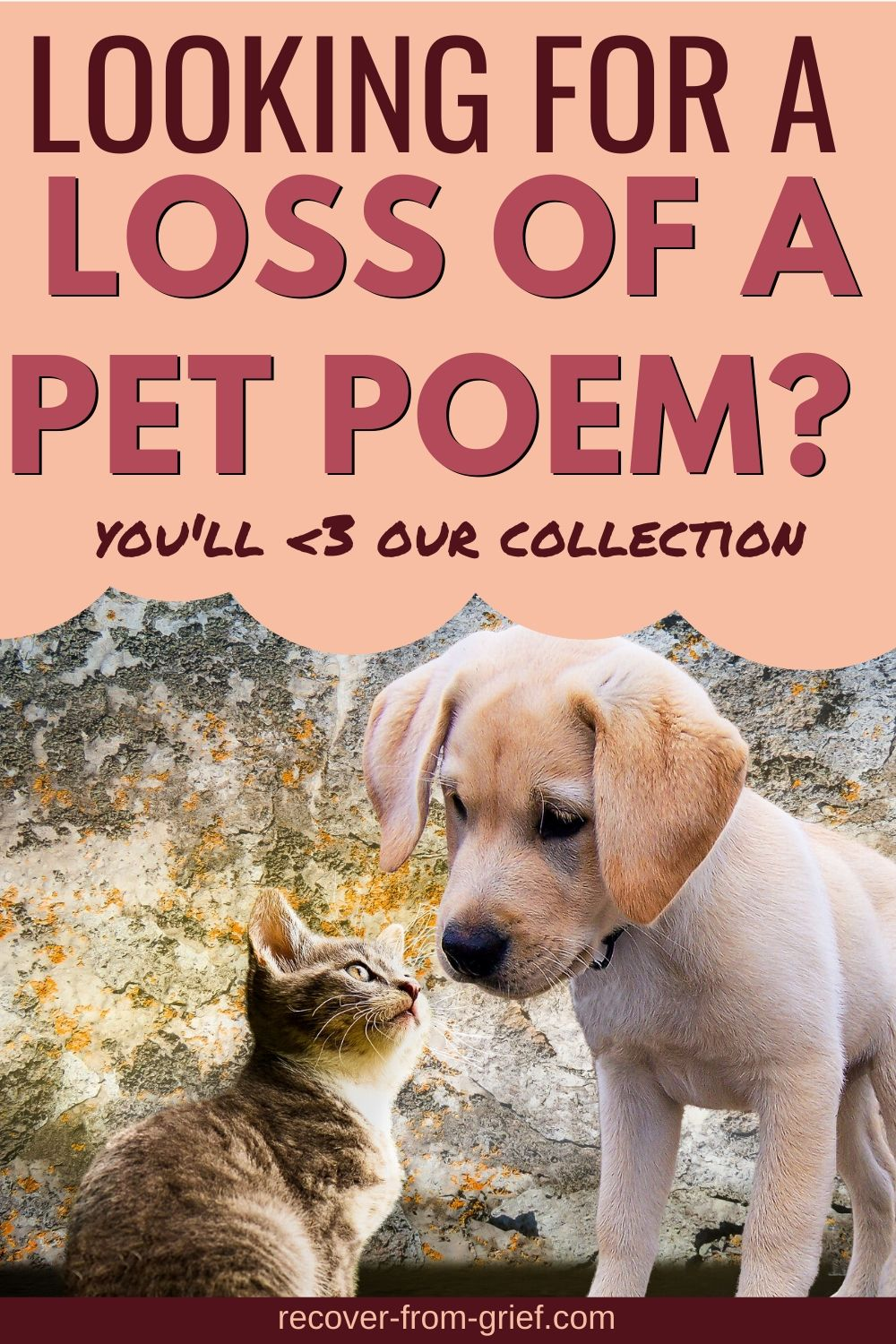 Looking for a loss of a pet poem? You'll love my collections. Come read one or more of the poems here and find peace. #petloss #petlosspoem #poems