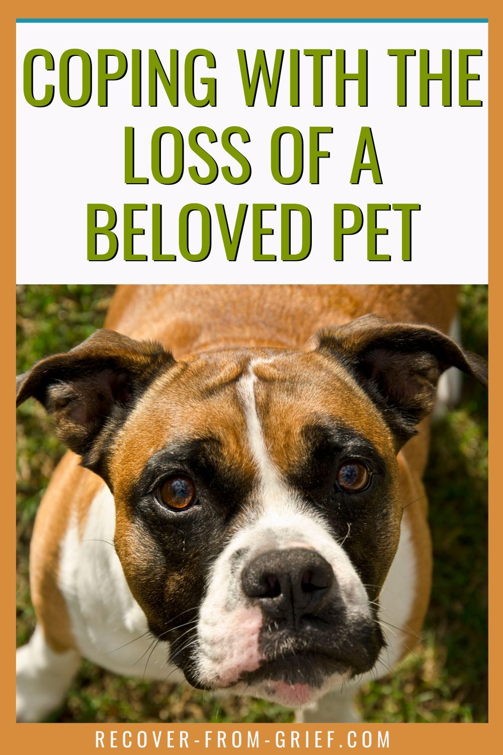 Have you lost a beloved pet? Come and learn how to deal with pet death in an environment where you are understood. #pets #petdeath #grief #bestfriend #loss #anguish
