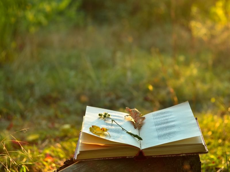 Poems For Bereavement That Speak to Your Soul