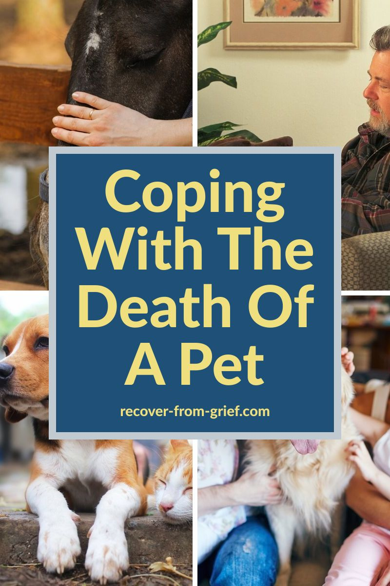 Coping with the death of a pet
