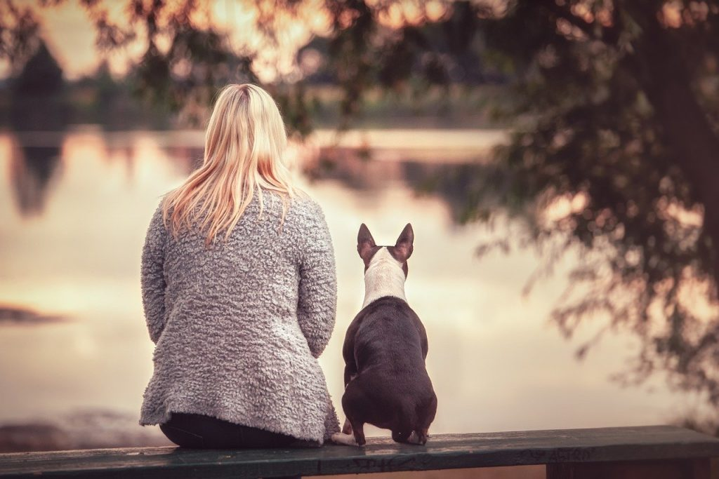 Pet Loss Books – Words Of Comfort From Pet Loss Survivors
